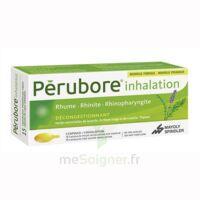 PERUBORE Caps inhalation par vapeur inhalation Plq/15 à BAR-SUR-AUBE
